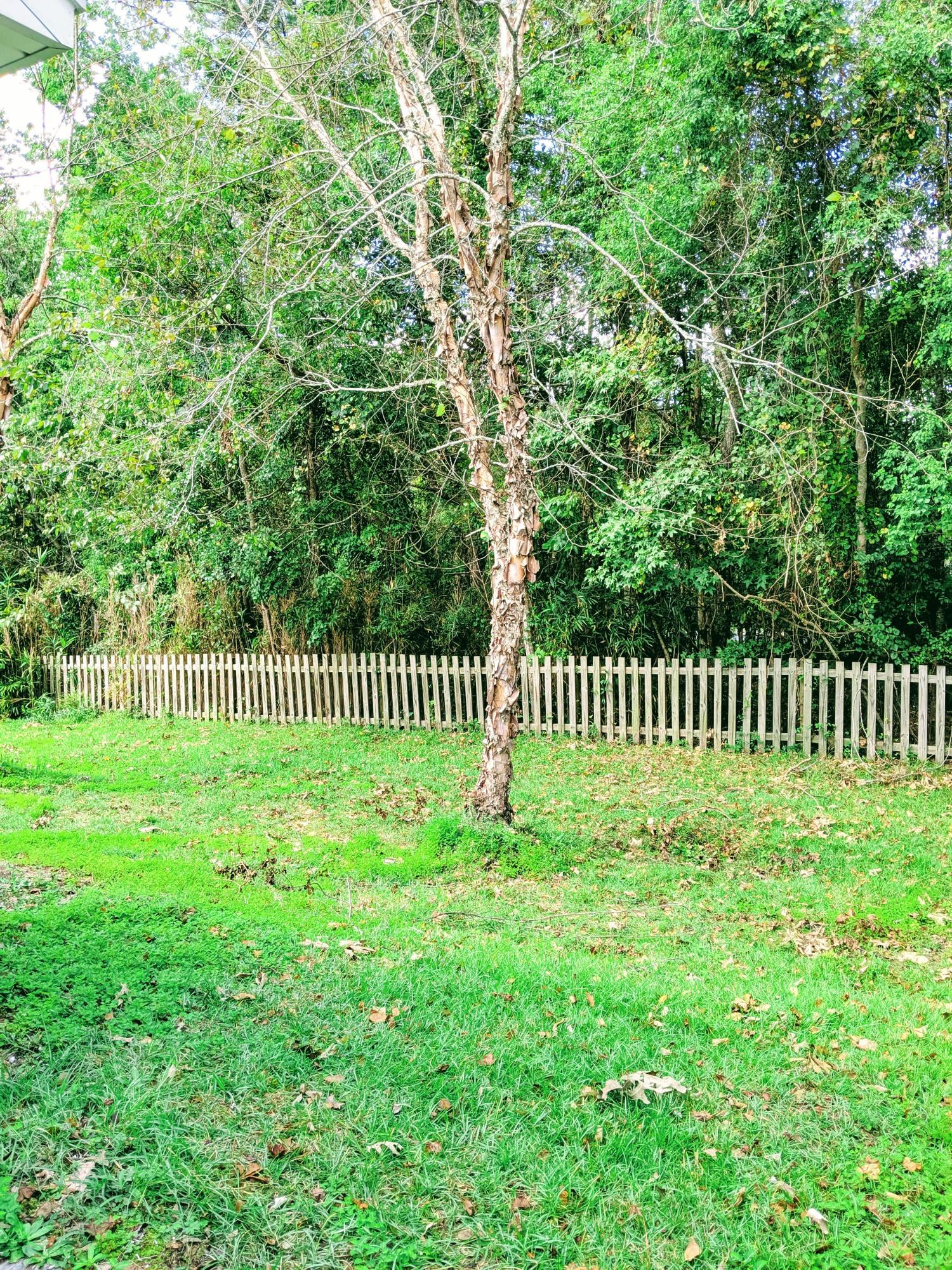 Park West Homes For Sale - 2131 Baldwin Park, Mount Pleasant, SC - 16