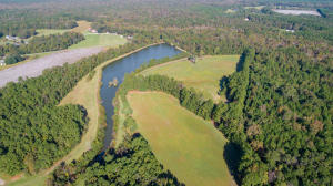 Back side of the property; 10 +/- acre pond and fields (2).