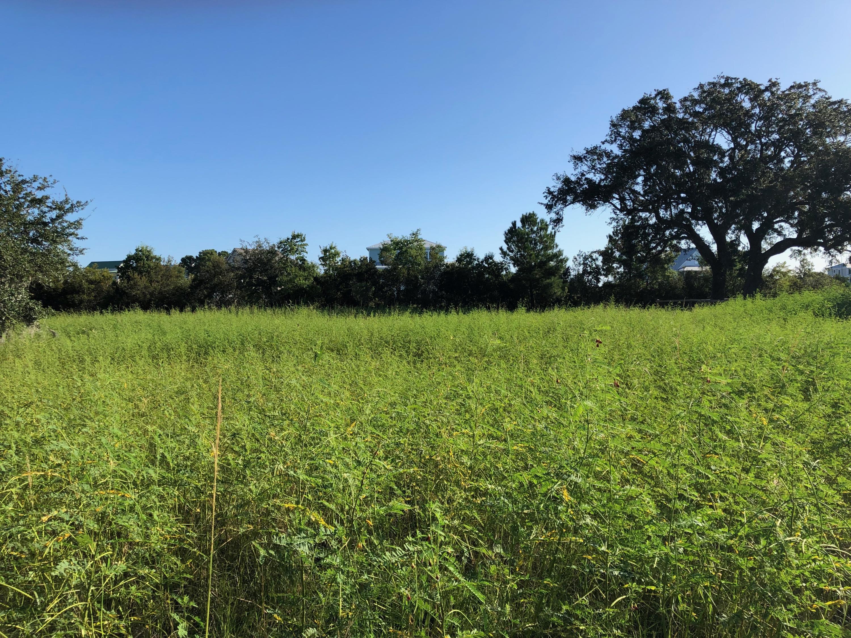 Rushland Plantation Lots For Sale - 2368 Rushland Landing, Johns Island, SC - 10