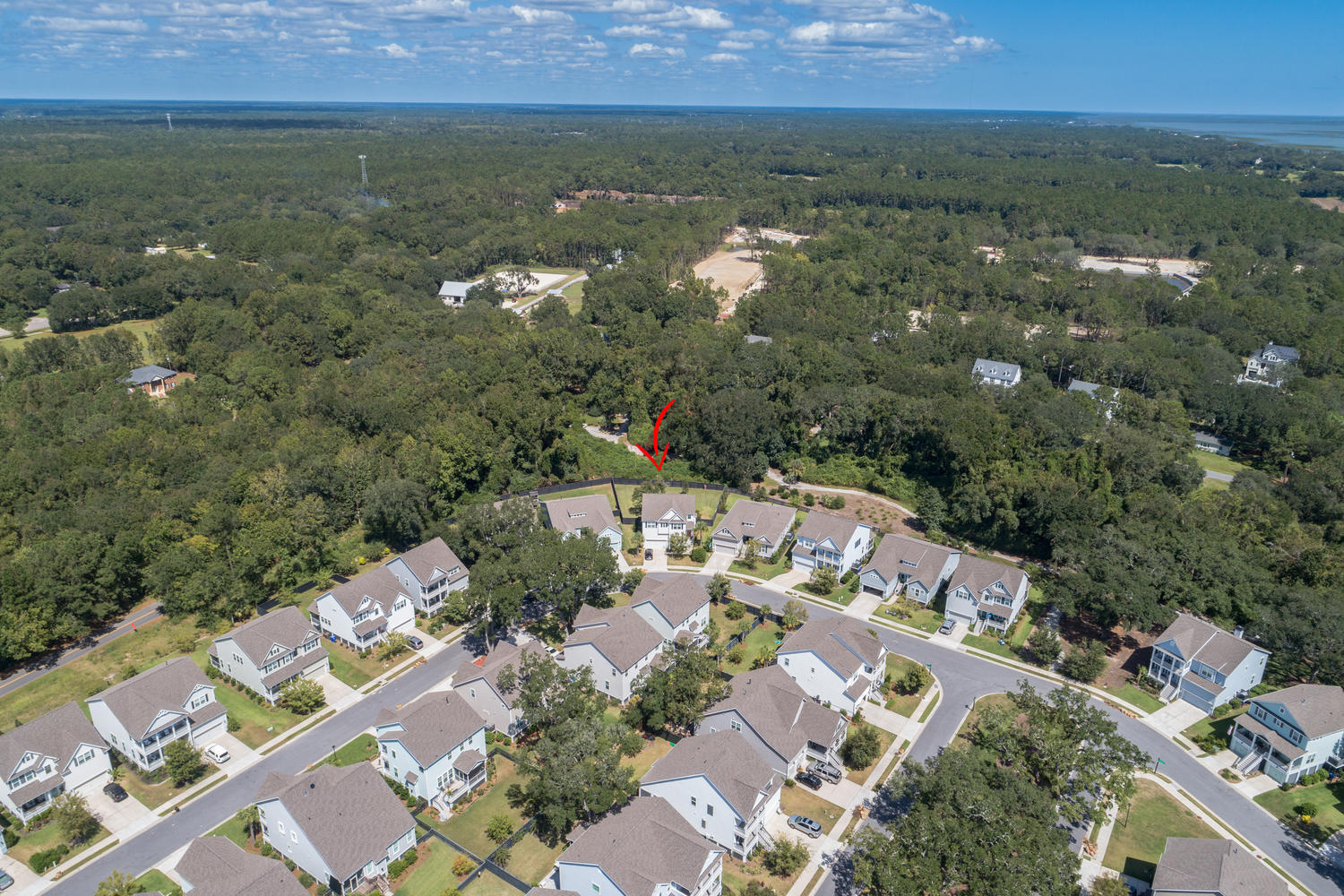 Oyster Point Homes For Sale - 2283 Skyler, Mount Pleasant, SC - 47