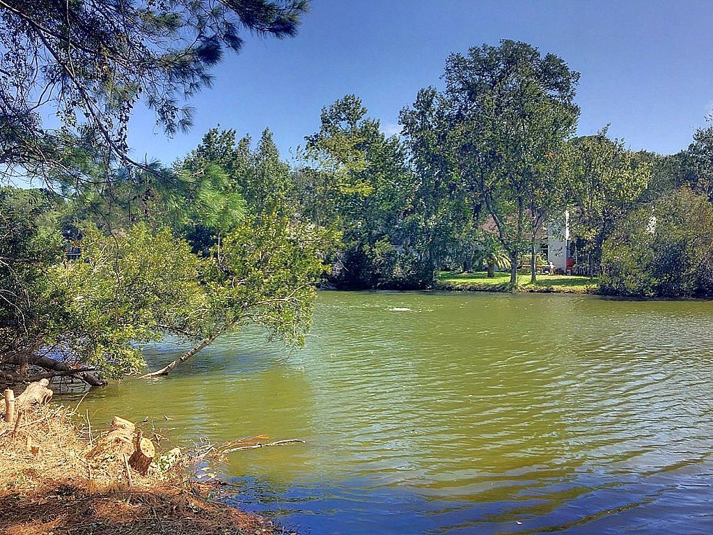 Center Lake Homes For Sale - 1318 Center Lake, Mount Pleasant, SC - 18