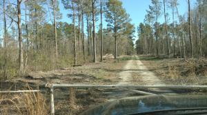 Property for sale at 0 Calamus Pond Road, Summerville,  South Carolina 29486