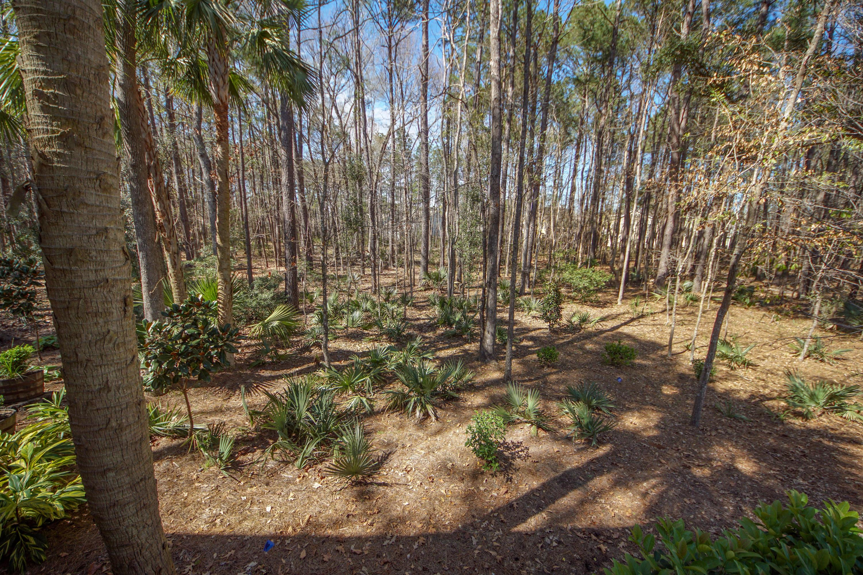 1717 W. Canning Drive Mount Pleasant, Sc 29466