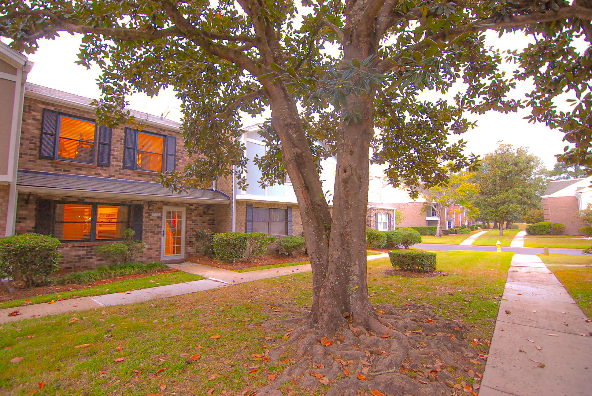 2928 Cathedral Lane Charleston, SC 29414