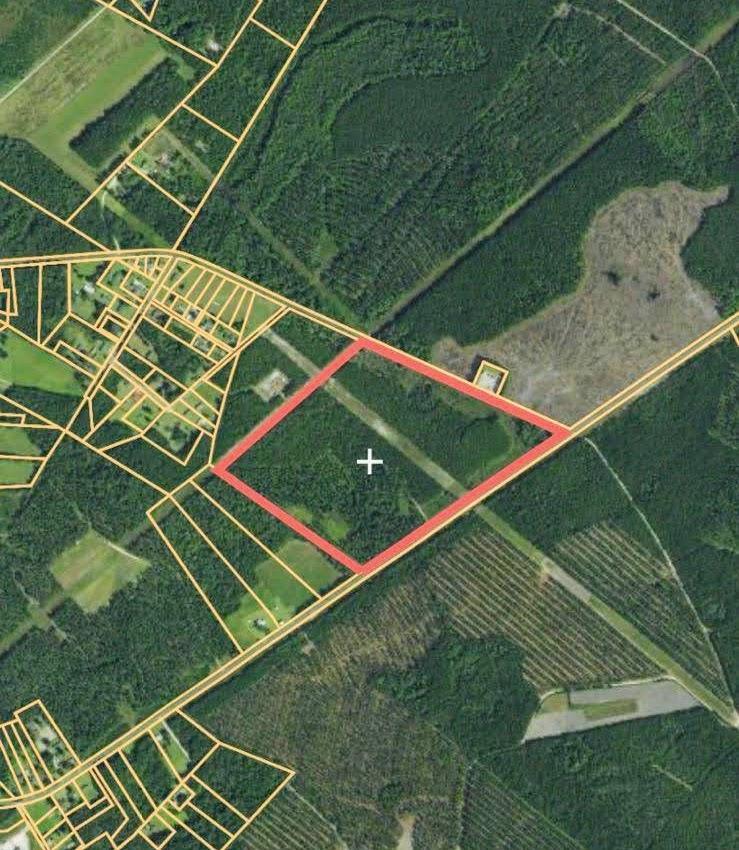1 Henderson Road Varnville, SC 29944