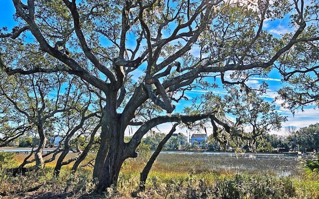 1702 Charming Nancy Road Charleston, SC 29412