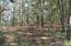 0 Bears Bluff Road, Wadmalaw Island, SC 29487