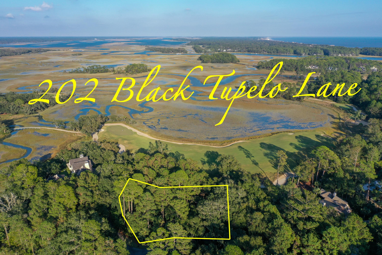 202 Black Tupelo Kiawah Island, SC 29455