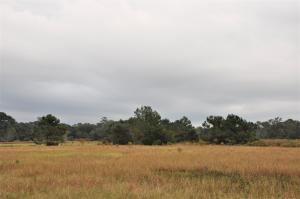 6212 Ranch Road, Wadmalaw Island, SC 29487