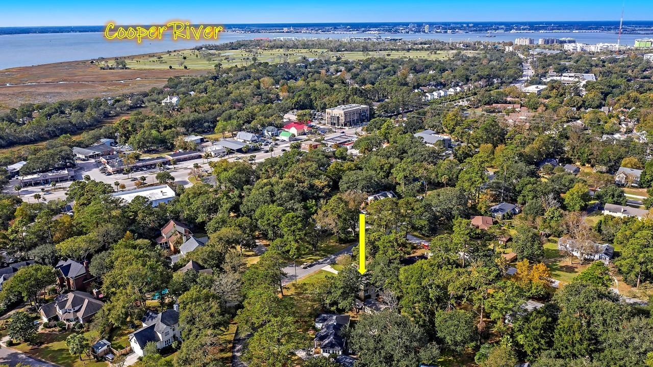 The Groves Homes For Sale - 424 Japonica, Mount Pleasant, SC - 6