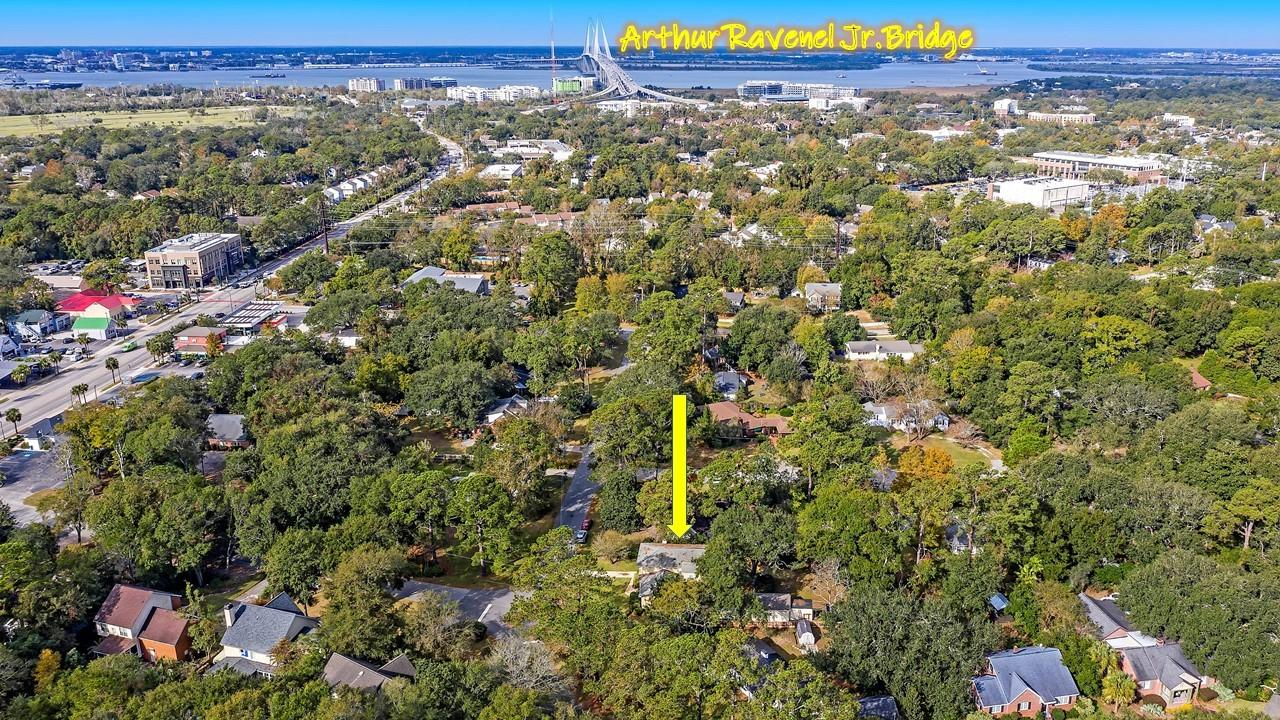 The Groves Homes For Sale - 424 Japonica, Mount Pleasant, SC - 23