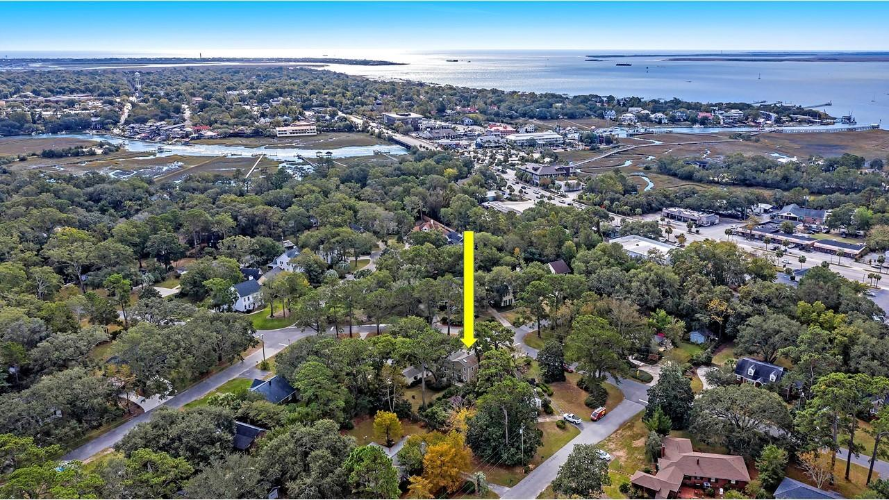 The Groves Homes For Sale - 424 Japonica, Mount Pleasant, SC - 5