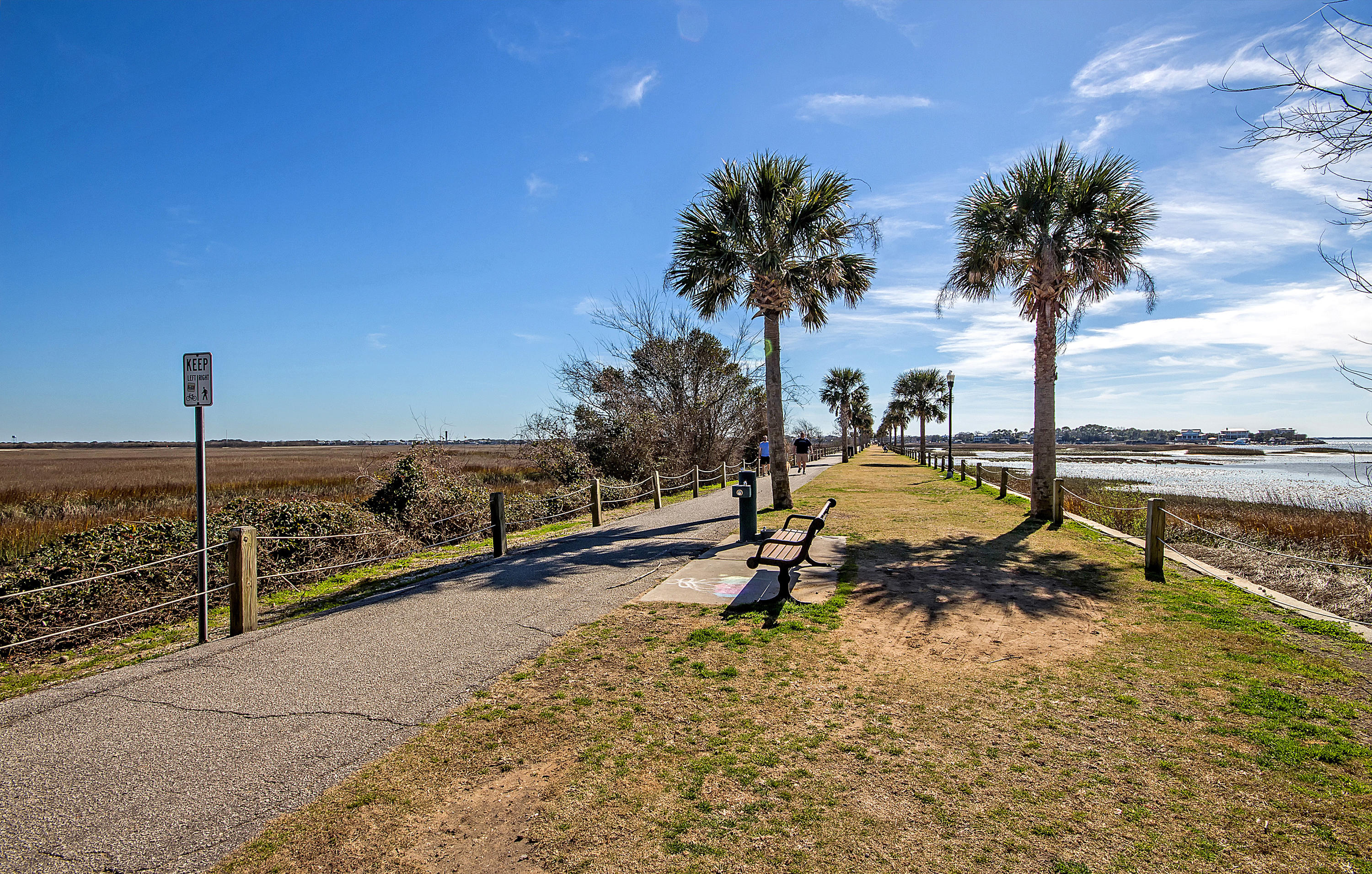 The Groves Homes For Sale - 424 Japonica, Mount Pleasant, SC - 20