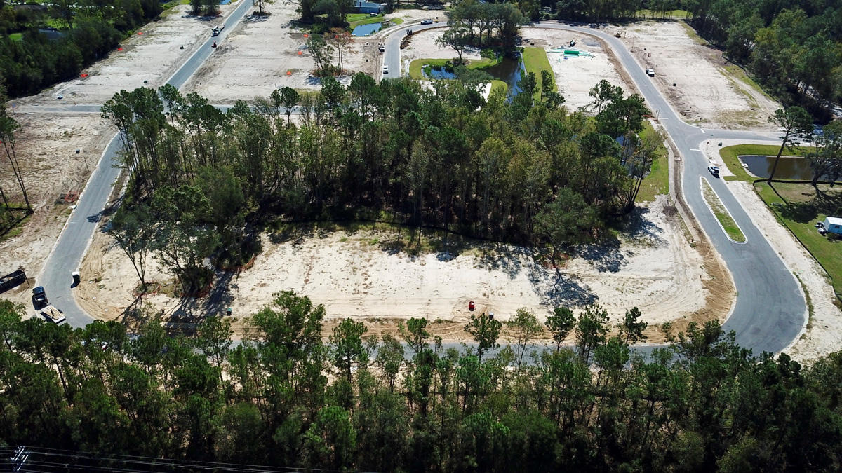 1031 Sago Palm Court Mount Pleasant, SC 29429
