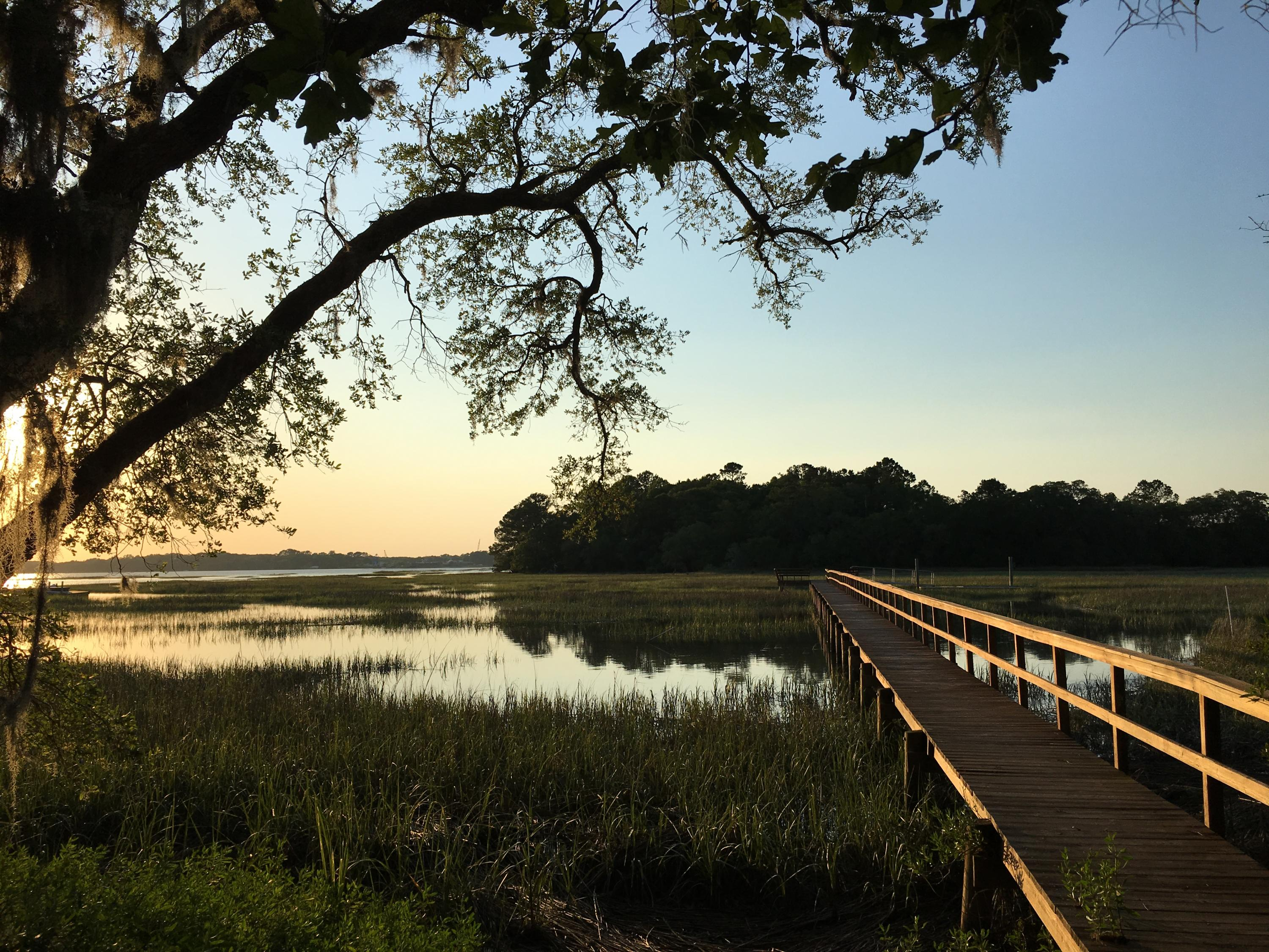 1356 Lot 7 Polly Point Rd Wadmalaw Island, SC 29487
