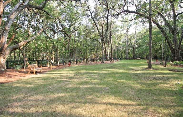 Carolina Bay Homes For Sale - 2238 Henry Tecklenburg, Charleston, SC - 29