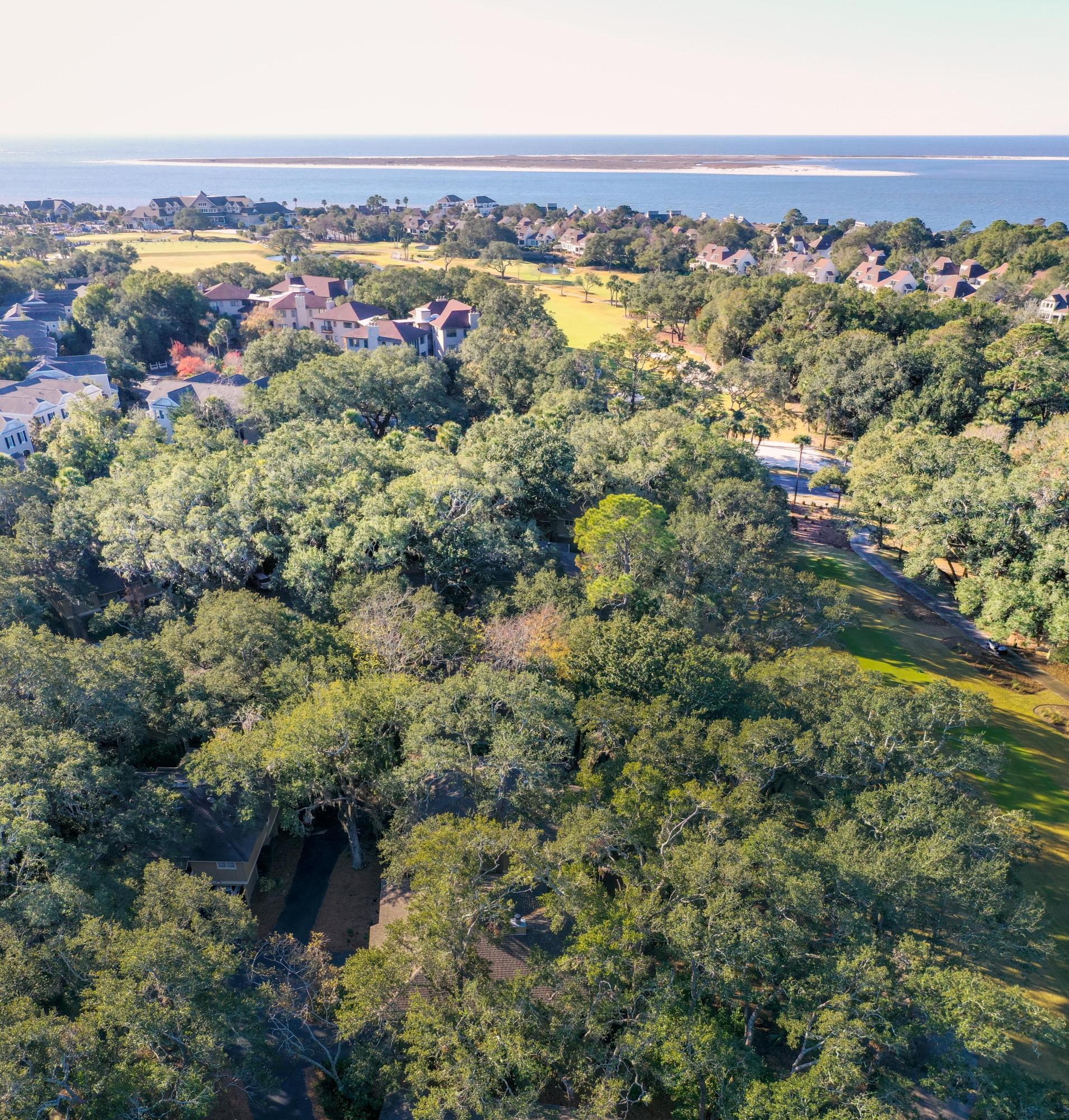 1115 Summer Wind Lane Seabrook Island, SC 29455