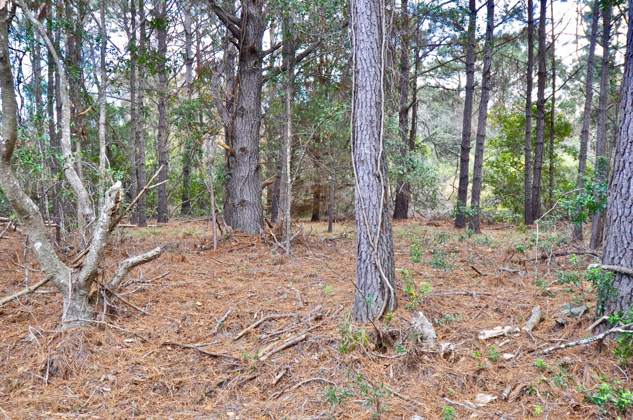 Lot 47 Marsh Aire Lane Edisto Island, SC 29438