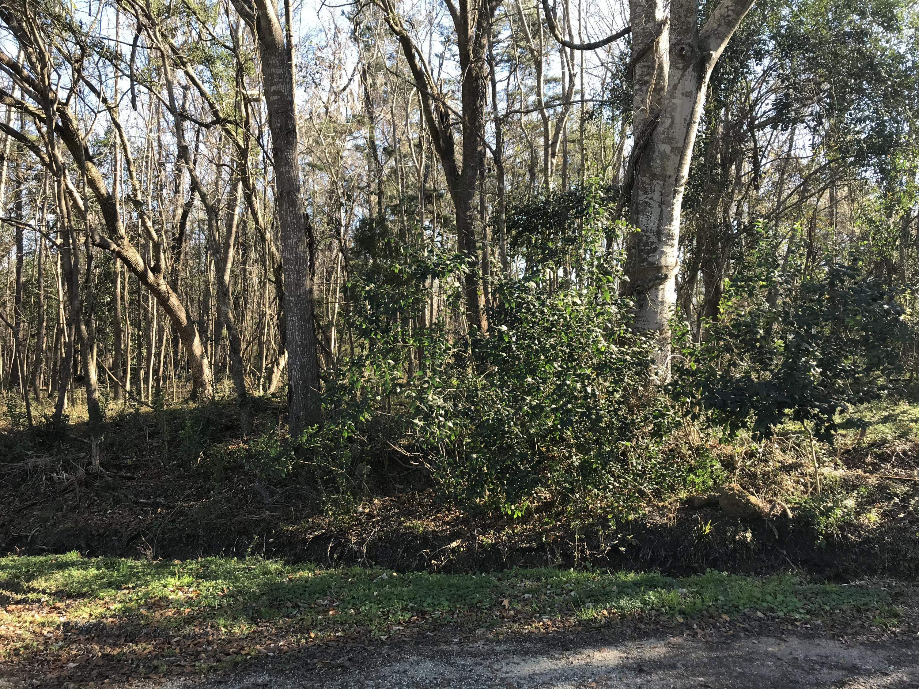 Lot 4 & 5 Golf Course Parkway Moncks Corner, SC 29461