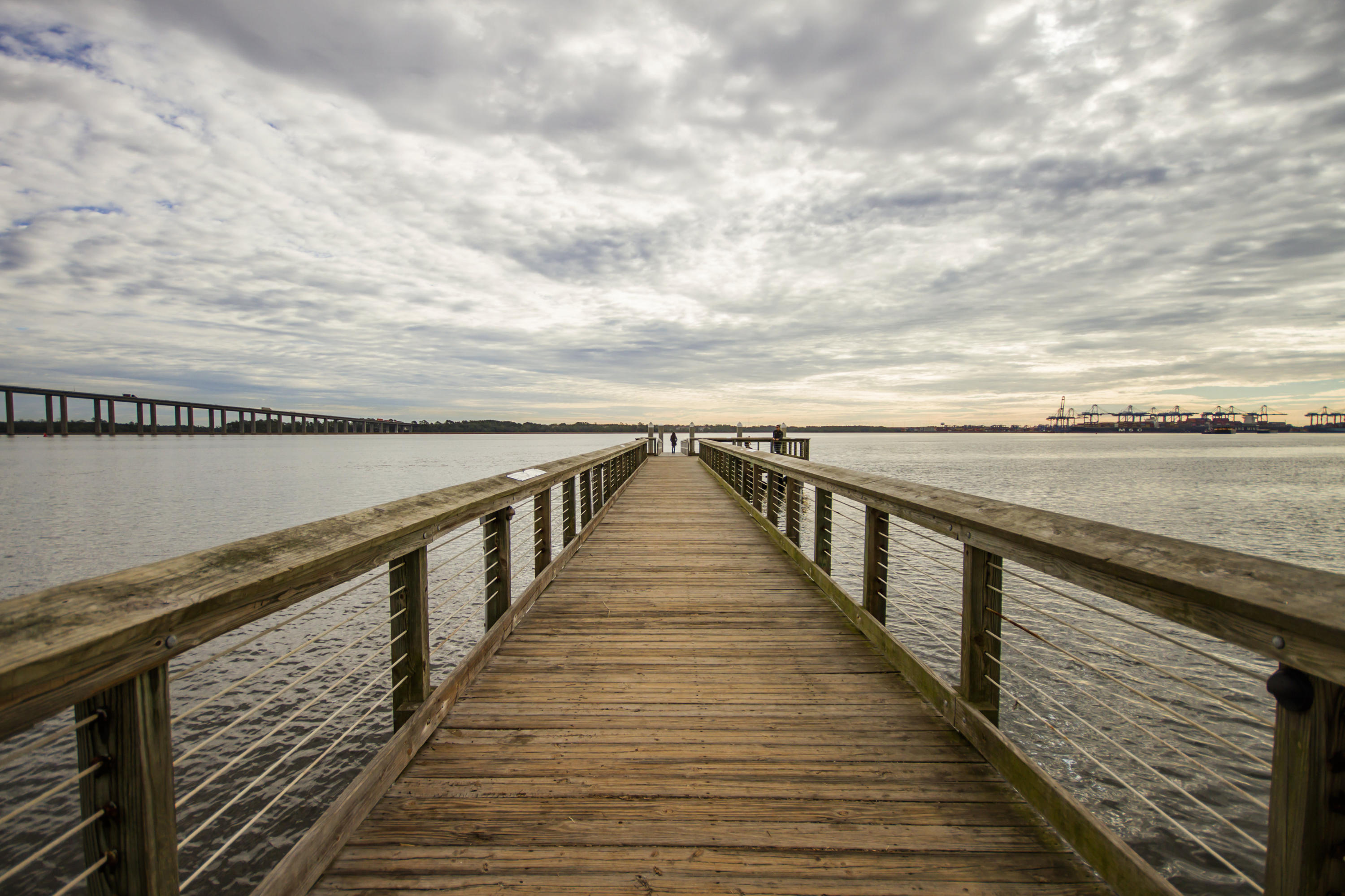 Pier View Homes For Sale - 125 Pier View, Charleston, SC - 18
