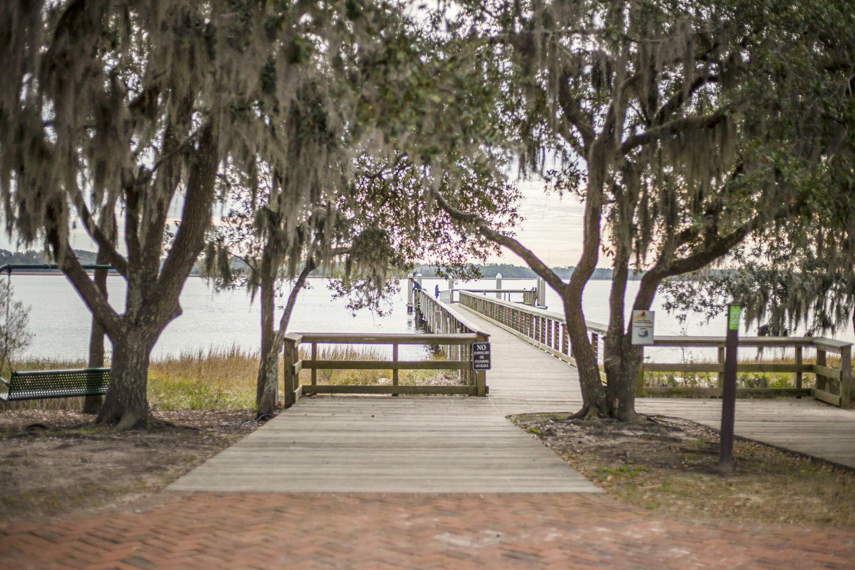 Pier View Homes For Sale - 125 Pier View, Charleston, SC - 10