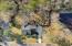 2115 Whisper Grass Circle, Mount Pleasant, SC 29466