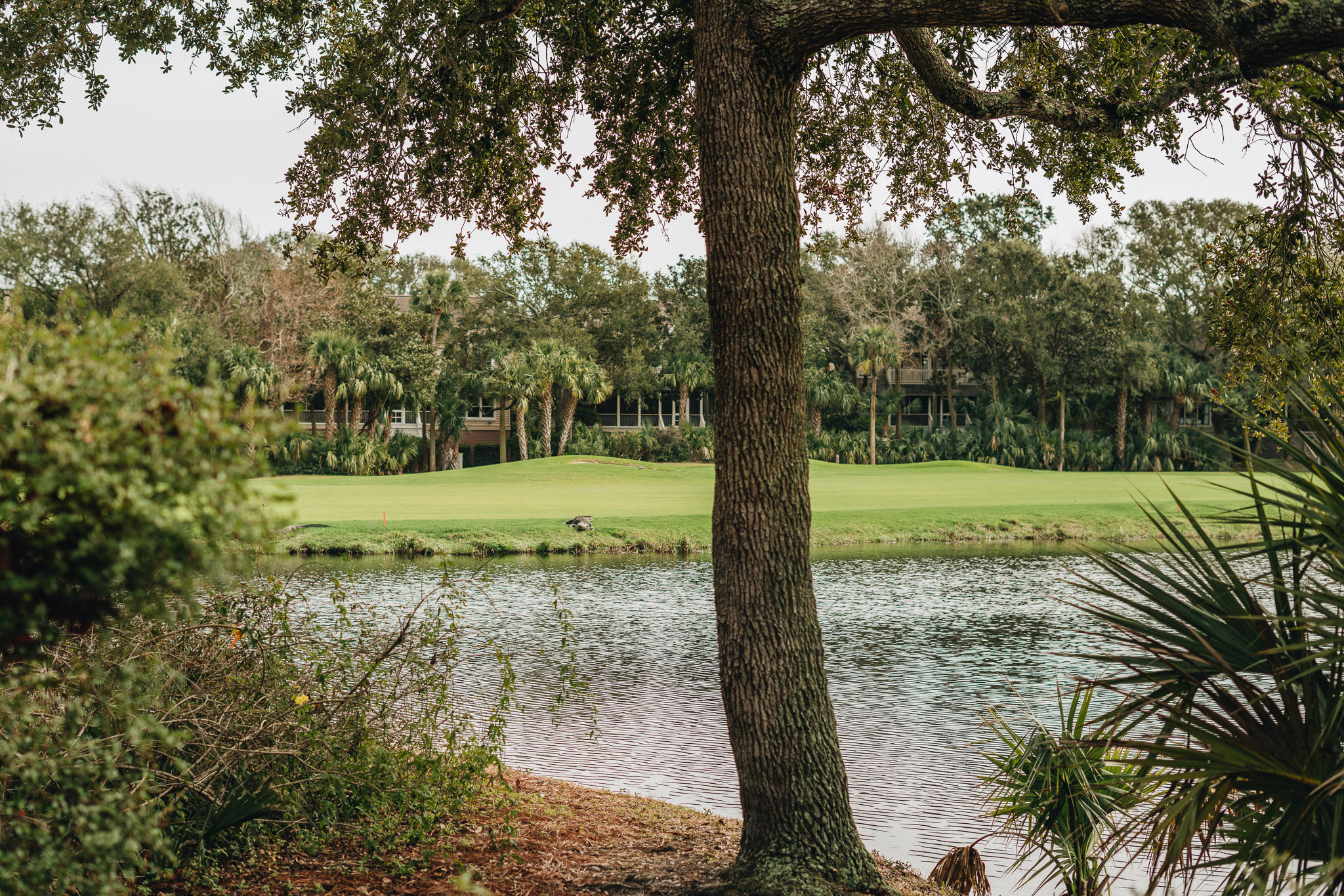 Turtle Point Homes For Sale - 4916 Green Dolphin, Kiawah Island, SC - 21