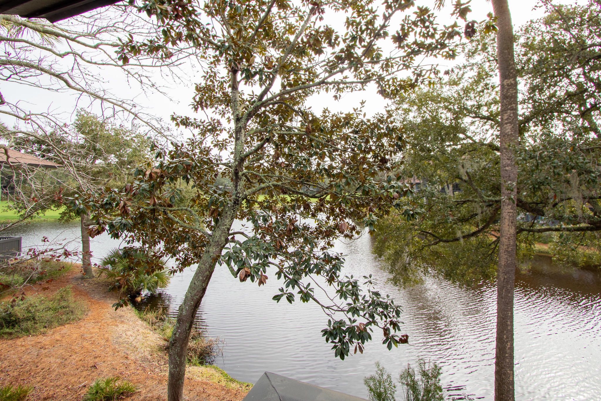 Turtle Point Homes For Sale - 4916 Green Dolphin, Kiawah Island, SC - 46