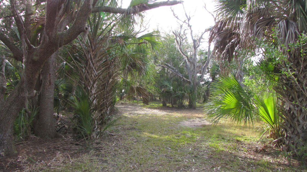 35 Hammocks Way Edisto Island, SC 29438