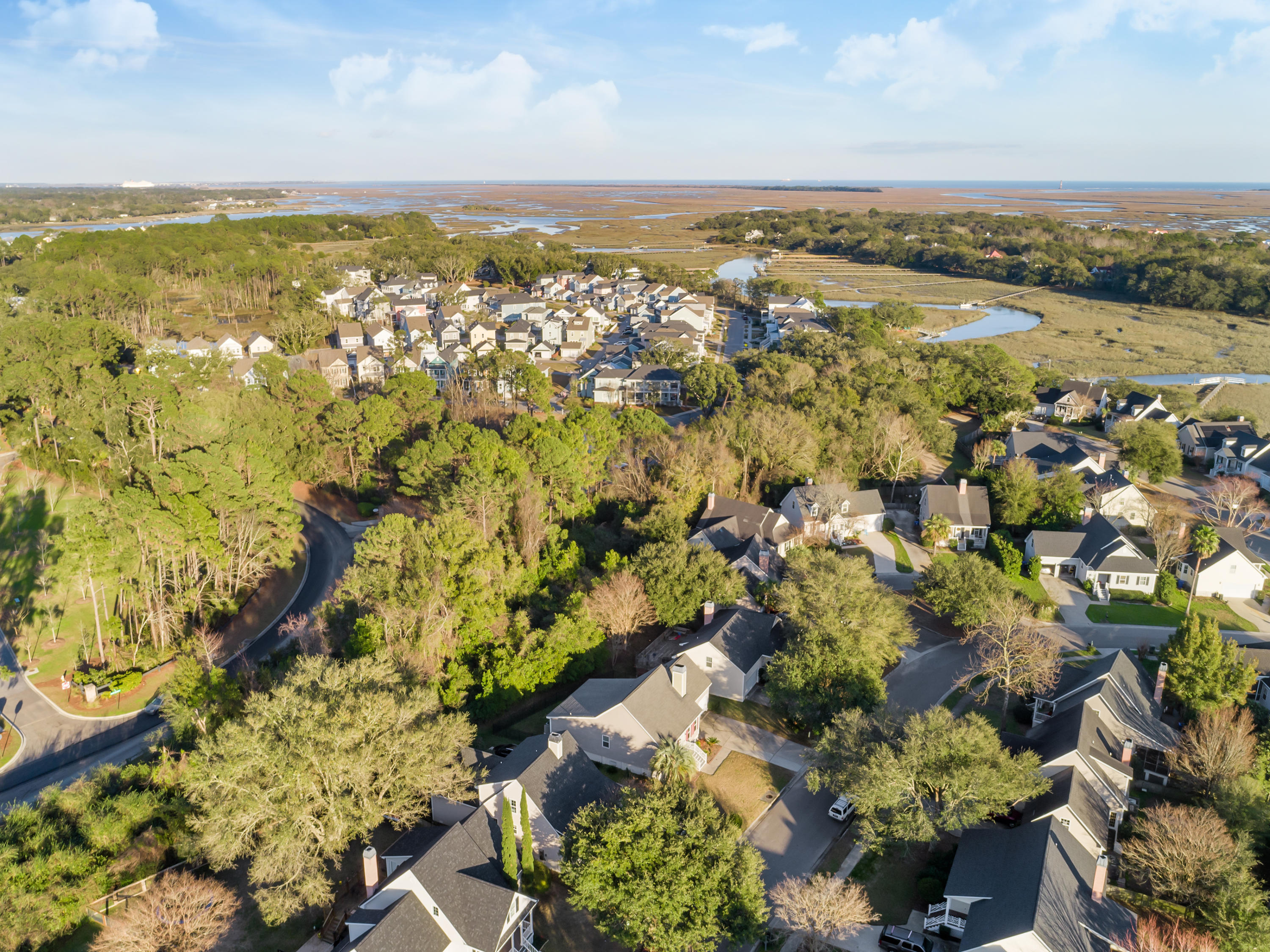 Pemberton at Seaside Plantation Homes For Sale - 1334 Ellison Run, Charleston, SC - 8