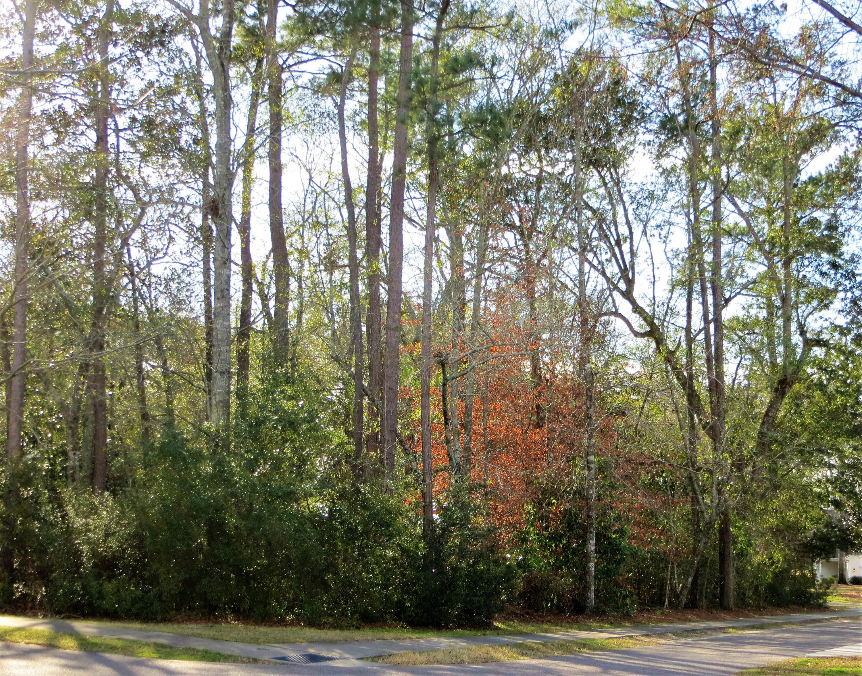 149 Donning Drive Summerville, SC 29483