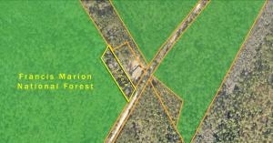 10744 Old Georgetown Road, McClellanville, SC 29458