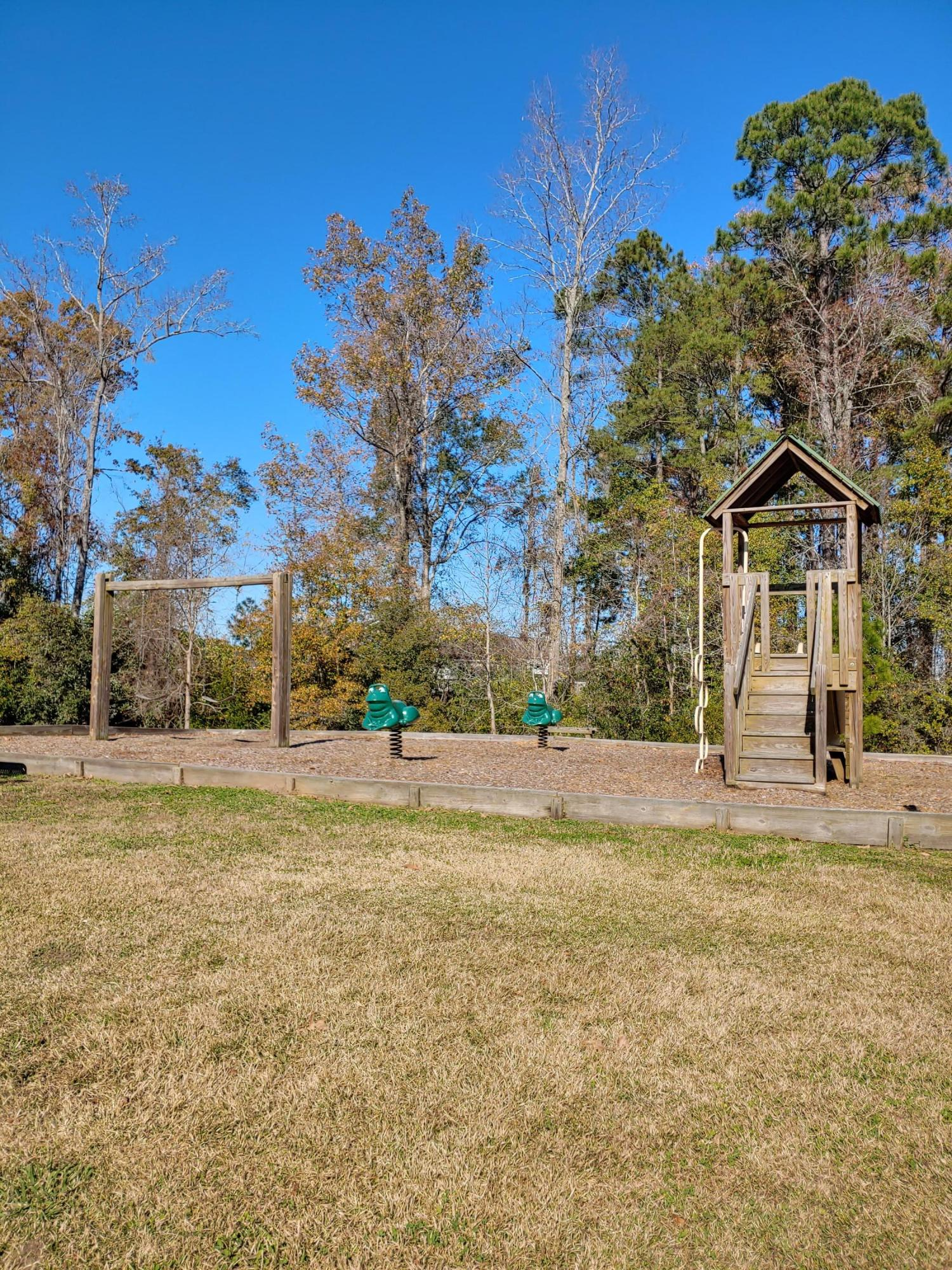 313 Todder Trail Goose Creek, SC 29445
