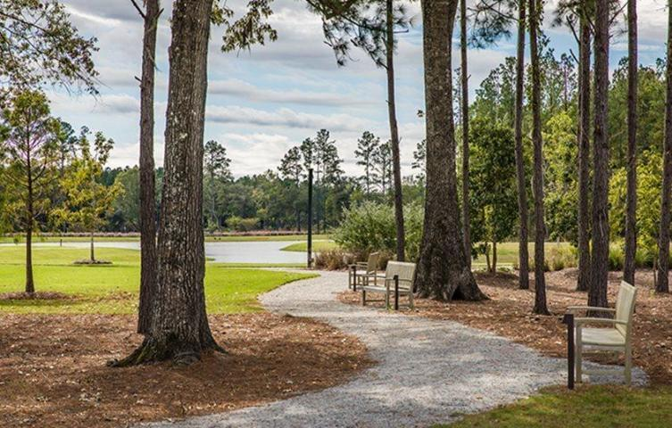 649 Water Lily Trail Summerville, SC 29485