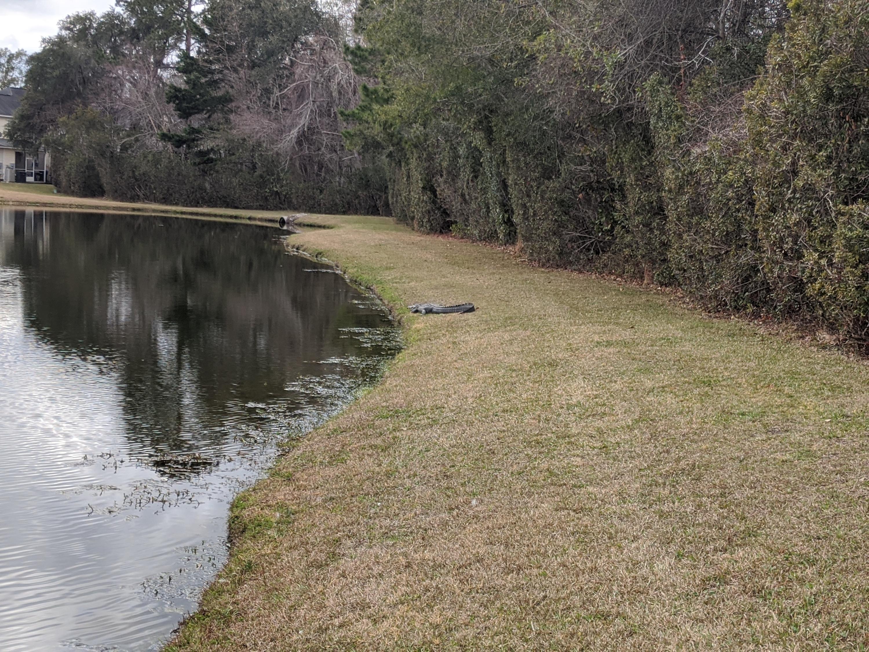 114 Black River Drive Summerville, Sc 29485