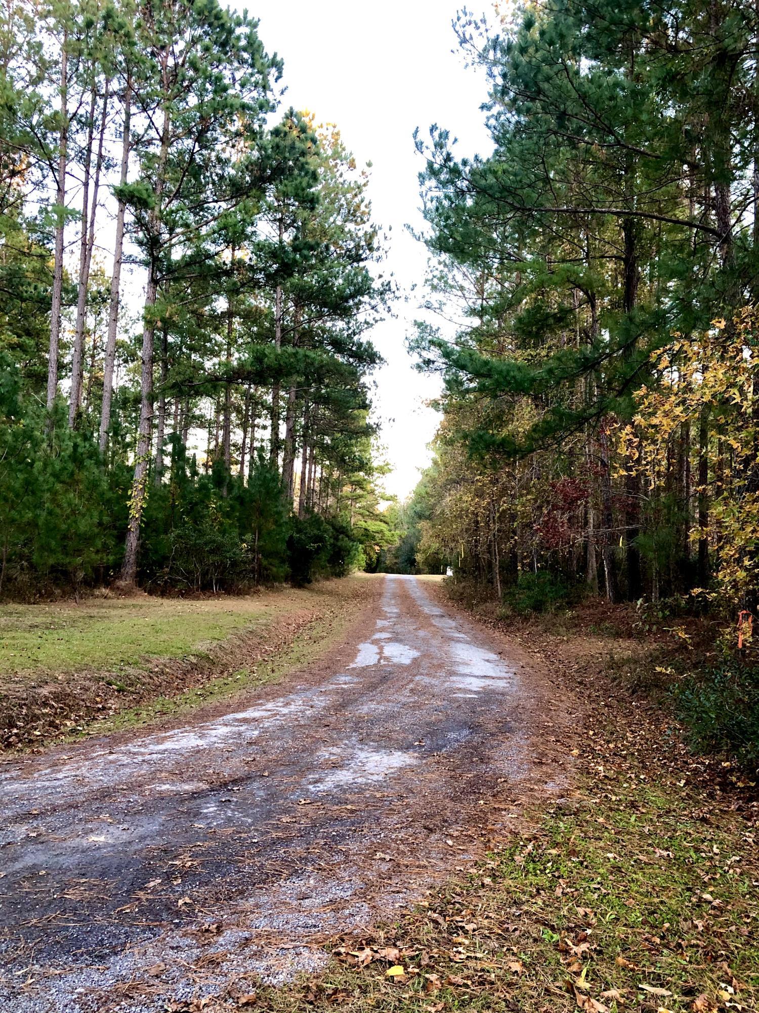 Rooster Ridge Road Summerville, SC 29483