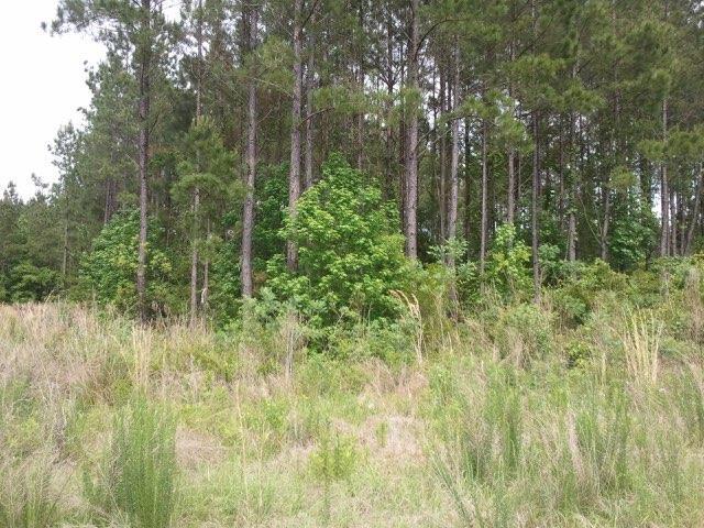 1128 Plantation Overlook Drive Moncks Corner, SC 29461