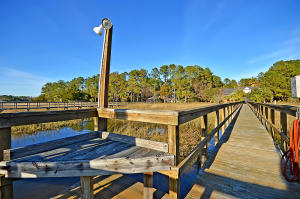 3136 Pignatelli Crescent, Mount Pleasant, SC 29466