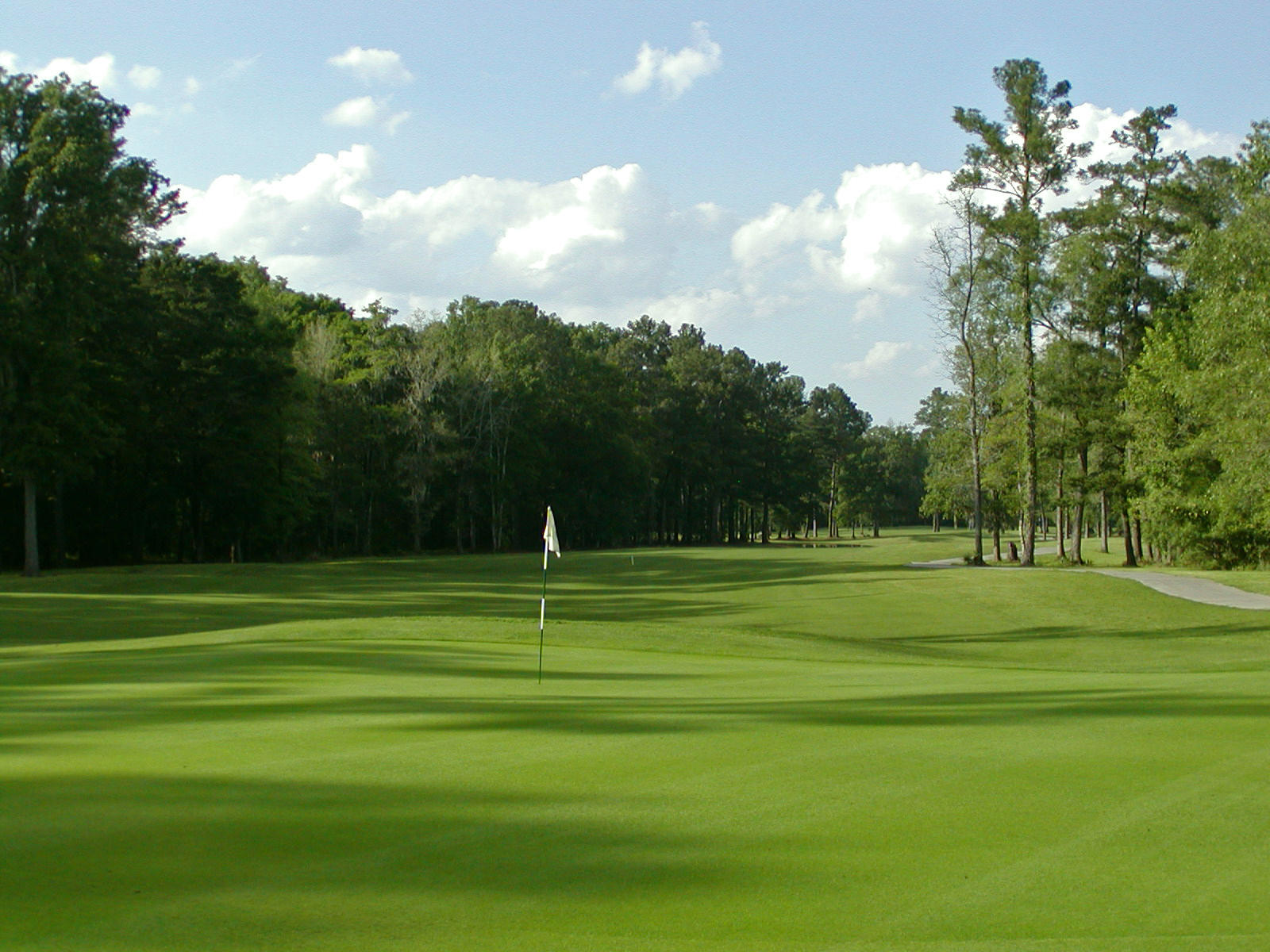 106 Back Tee Circle Summerville, Sc 29485