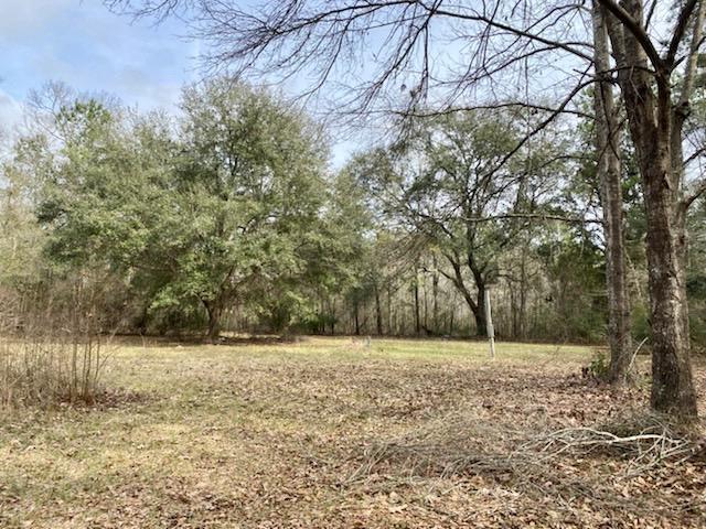 247 Catholic Hill Circle Walterboro, SC 29488
