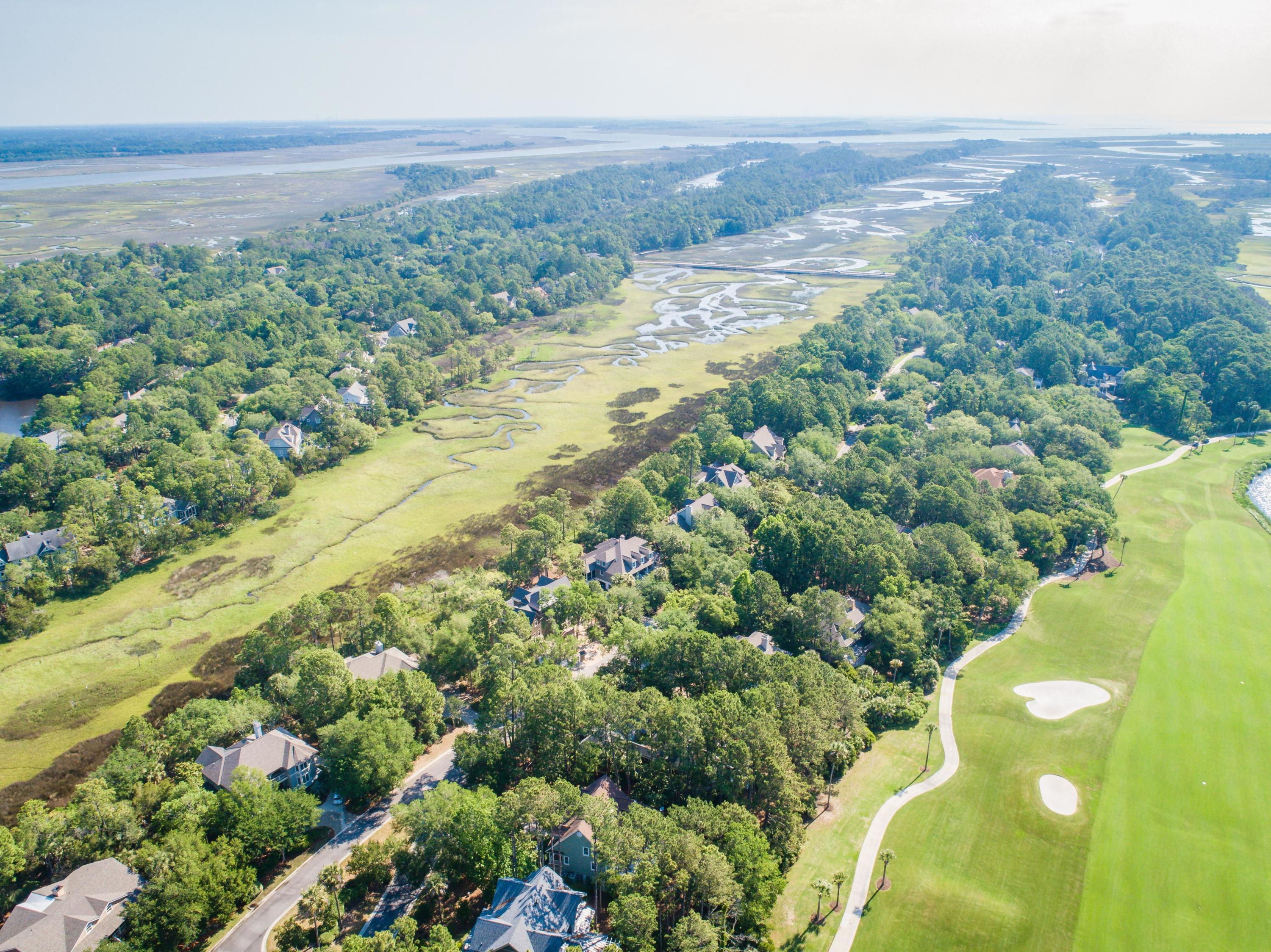 Kiawah Island Homes For Sale - 746 Glossy Ibis, Kiawah Island, SC - 9