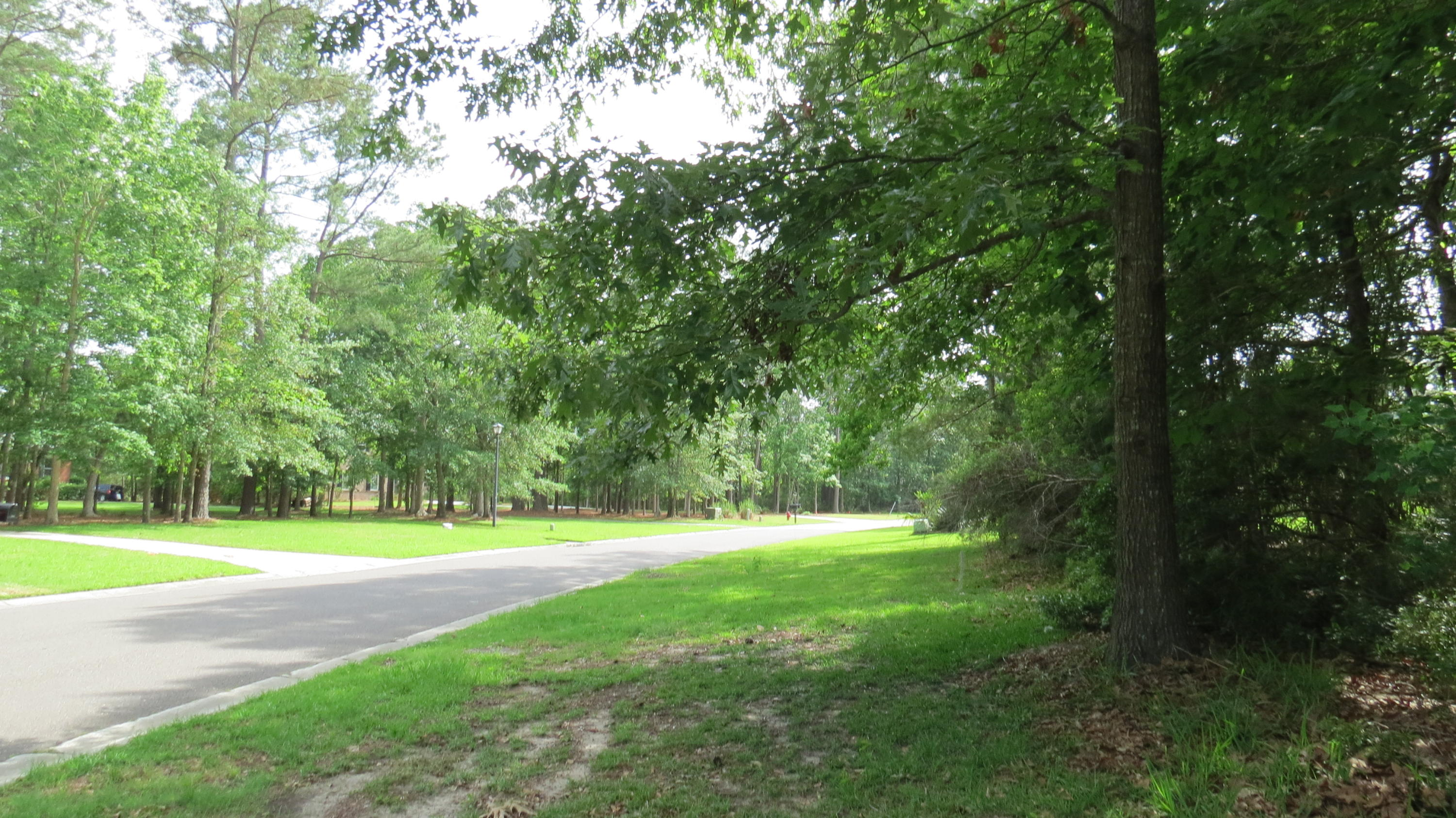 2068 Shell Ring Circle Mount Pleasant, SC 29466