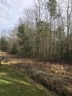 0 Cane Branch Road, Walterboro, SC 29488