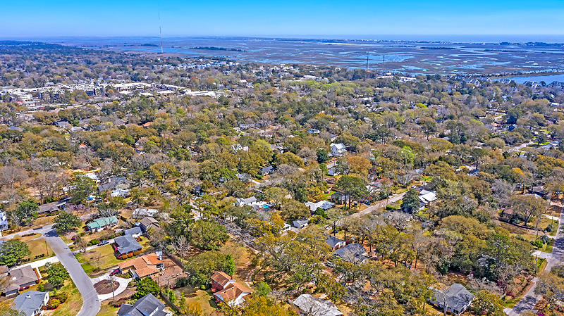 Old Mt Pleasant Homes For Sale - 827 Mccants, Mount Pleasant, SC - 24