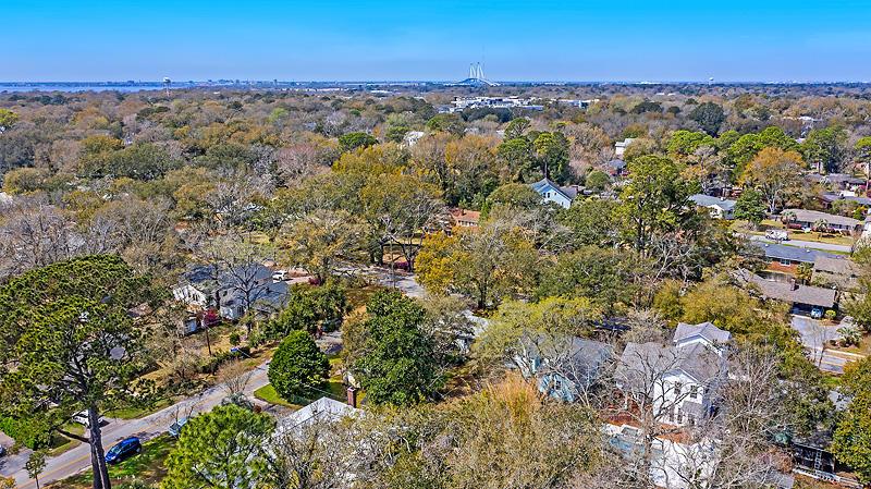 Old Mt Pleasant Homes For Sale - 827 Mccants, Mount Pleasant, SC - 41