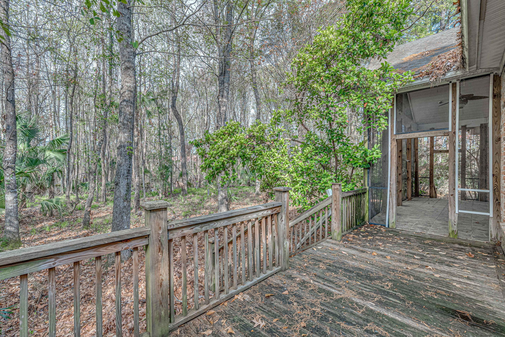 2373 Darts Cove Way Mount Pleasant, SC 29466
