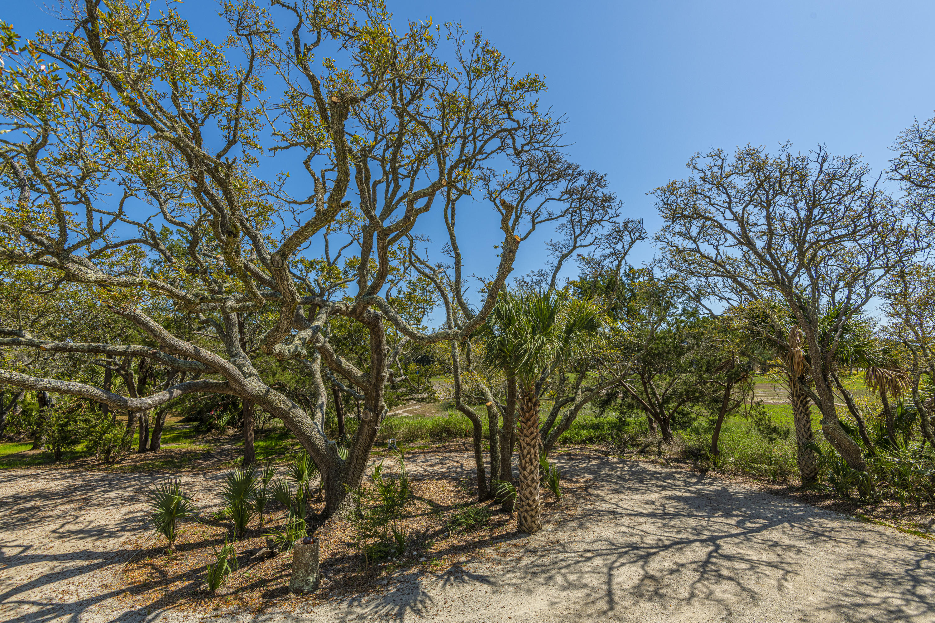 80 Planters Retreat Edisto Island, SC 29438