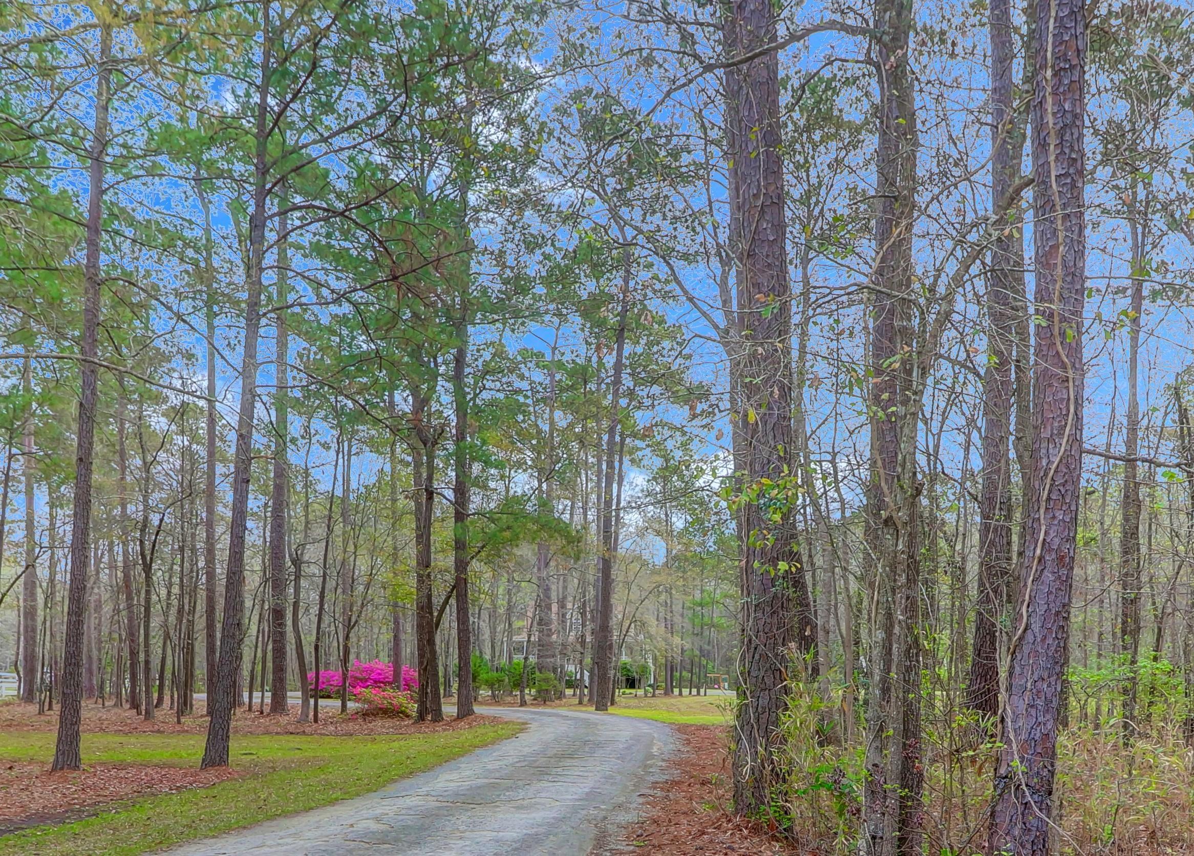 780 Yaupon Drive Charleston, Sc 29492
