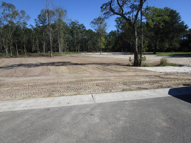 Lot 1b Newport Court Charleston, SC 29492