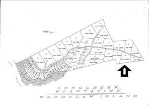 0 Long Creek Road, Wadmalaw Island, SC 29487
